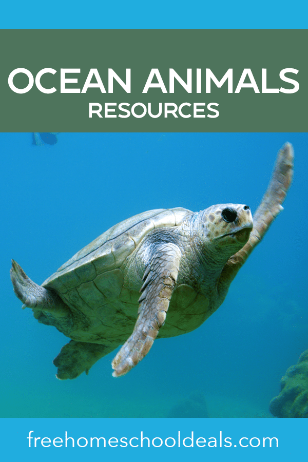 Create a whole ocean unit with these FREE Ocean Animals Resources! #fhdhomeschoolers #freehomeschooldeals #oceananimals #aquariummonth #biology