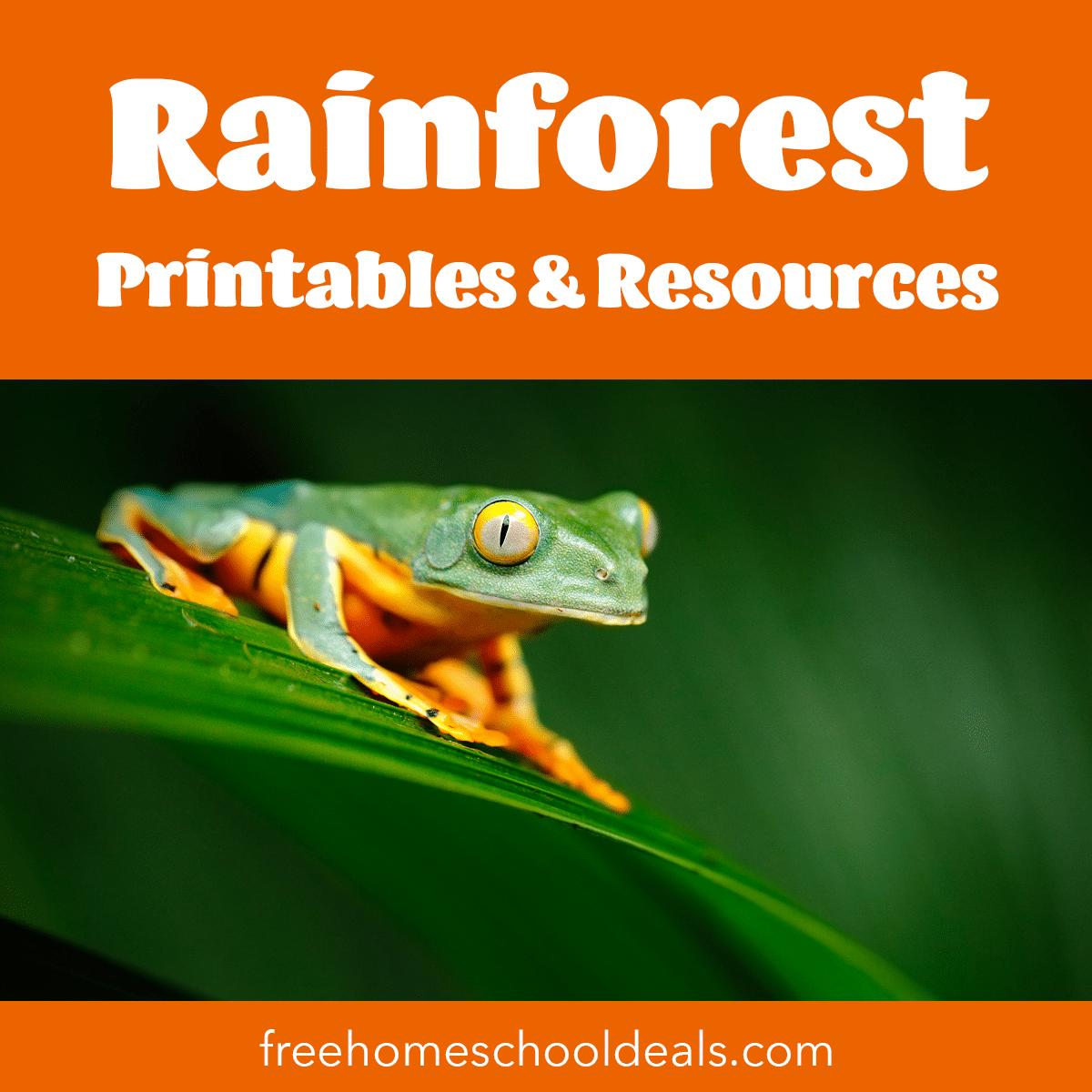 Free Rainforest Printables Resources Free Homeschool Deals C