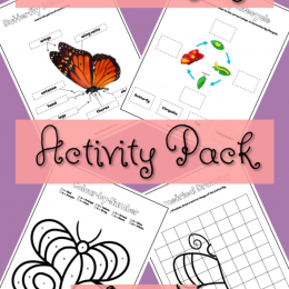 FREE Butterfly Activity Worksheets. #freehomeschooldeals #fhdhomeschoolers #butterflyuntistudy #butterflyactivities #butterflyworksheets #butterflylifecycle