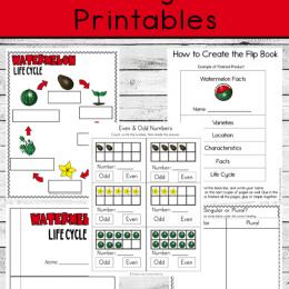 FREE Watermelon Life Cycle Printables. #freehomeschooldeals #fhdhomeschoolers #watermelonlifecycle #watermelonprintables