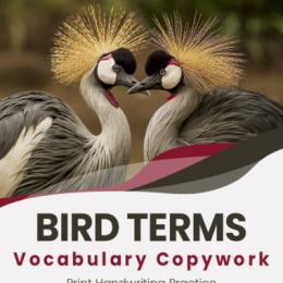 Free Vocabulary Copywork On Bird Terms. #freehomeschooldeals #fhdhomeschoolers #birdterms #birdvocabularyterms #birdcopywork