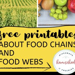 Food Webs and Food Chains FREE Printables. #fhdhomeschoolers #freehomeschooldeals #foodwebprintables #foodchainprintables