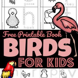 Preschool FREE Bird Printable Book