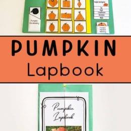 Pumpkin Life Cycle FREE Lapbook. #fhdhomeschoolers #freehomeschooldeals #pumpkinlifecycle #lifecycleofpumpkins#lapbook #pumpkinlapbook #lifecyclelapbook