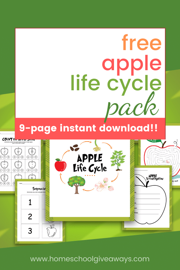 FREE Apple Life Cycle Study. #freehomeschooldeals #fhdhomeschoolers #applylifecyclestudy #applelifecycle #appleprintables #lifecycleprintables