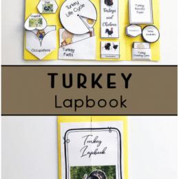 Free Turkey Printable Lapbook. #freeturkeylapbook #printableturkeylapbook #turkeyunitstudy #freehomeschooldeals #fhdhomeschoolers