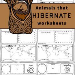 Hibernating Animals Printable Pages. #hibernationunitstudy #hibernationworksheets #winterunitstudy #freehomeschooldeals #fhdhomeschoolers