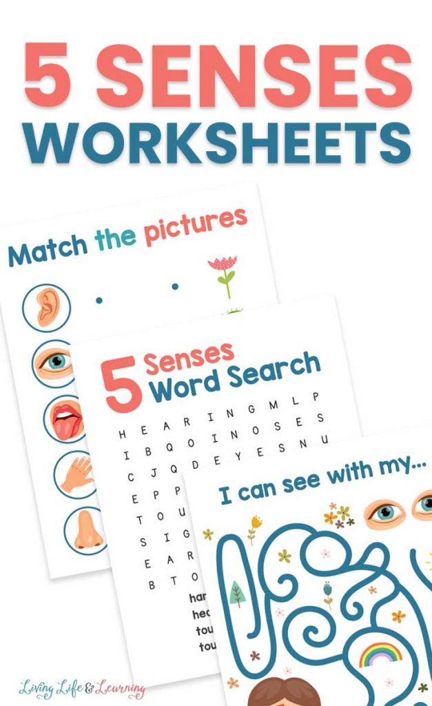 FREE Five Senses Worksheets. #freehomeschooldeals #fhdhomeschoolers #5sensesworksheets #fivesensesworksheets #5senseresources