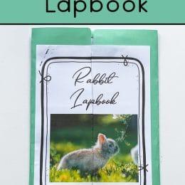 Free Rabbit Lapbook. #freehomeschooldeals #fhdhomeschoolers #rabbitlapbook #rabbitprintables #animallapbook