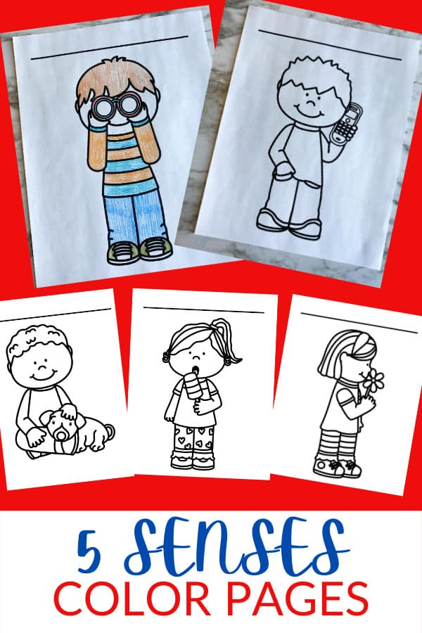 FREE 5 Senses Coloring Pages. #freehomeschooldeals #fhdhomeschoolers #fivesensescoloringpages #coloringpagesonsenses #fivesensesprintables