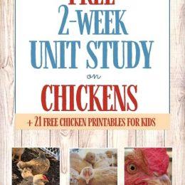 FREE Chickens Unit Study. #freehomeschooldeals #fhdhomeschoolers #chickenunitstudy #chickenprintables #unitstudyonchickens