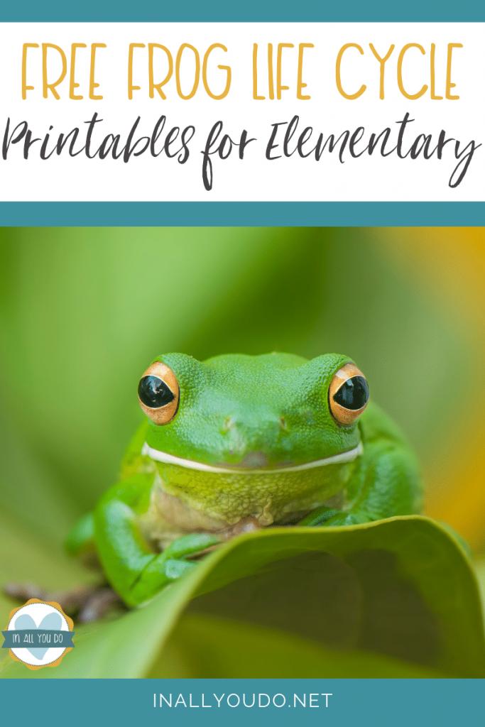 FREE Frog Life Cycle Printables. #freehomeschooldeals #fhdhomeschoolers #froglifecycle #lifecycleprintables #frogprintables
