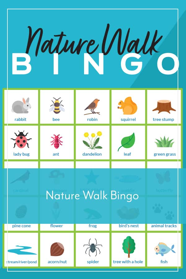 bingo board images of bugs, plants, animals with nature walk bingo text overlay