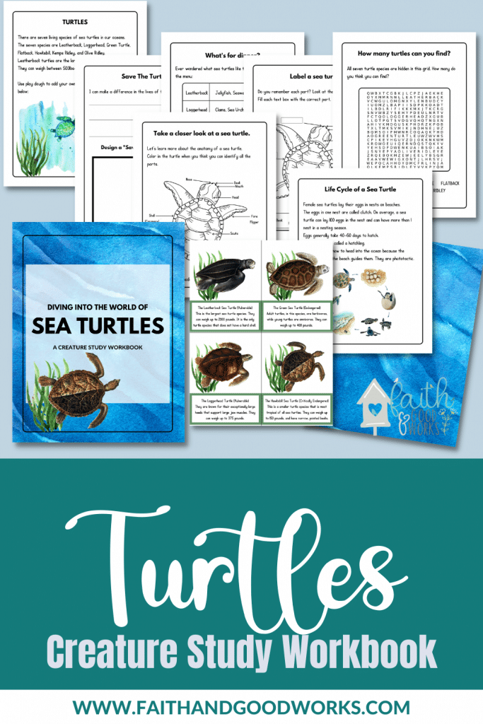 Sea Turtles Study Workbook, printables images, and turtles text overlay. #freehomeschooldeals #fhdhomeschoolers #studyingseaturtles #seaturtlesunitstudy #seaturtleworksheets
