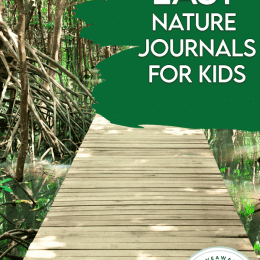 nature path landscape background and text overlay. #freehomeschooldeals #fhdhomeschoolers #freenaturejournalsforkids #naturejournaling #learningaboutnature