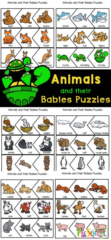 Preschool Animal Babies Puzzles. #freehomeschooldeals #fhdhomeschoolers #learningaboutanimalbabies #animalbabiesactivity #freepreschoolpuzzles