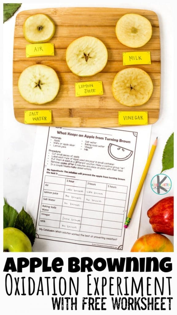 Oxidation Experiment and Worksheet. #freehomeschooldeals #fhdhomeschoolers #learningaboutoxidation #oxidationworksheets #oxidationexperimentforkids