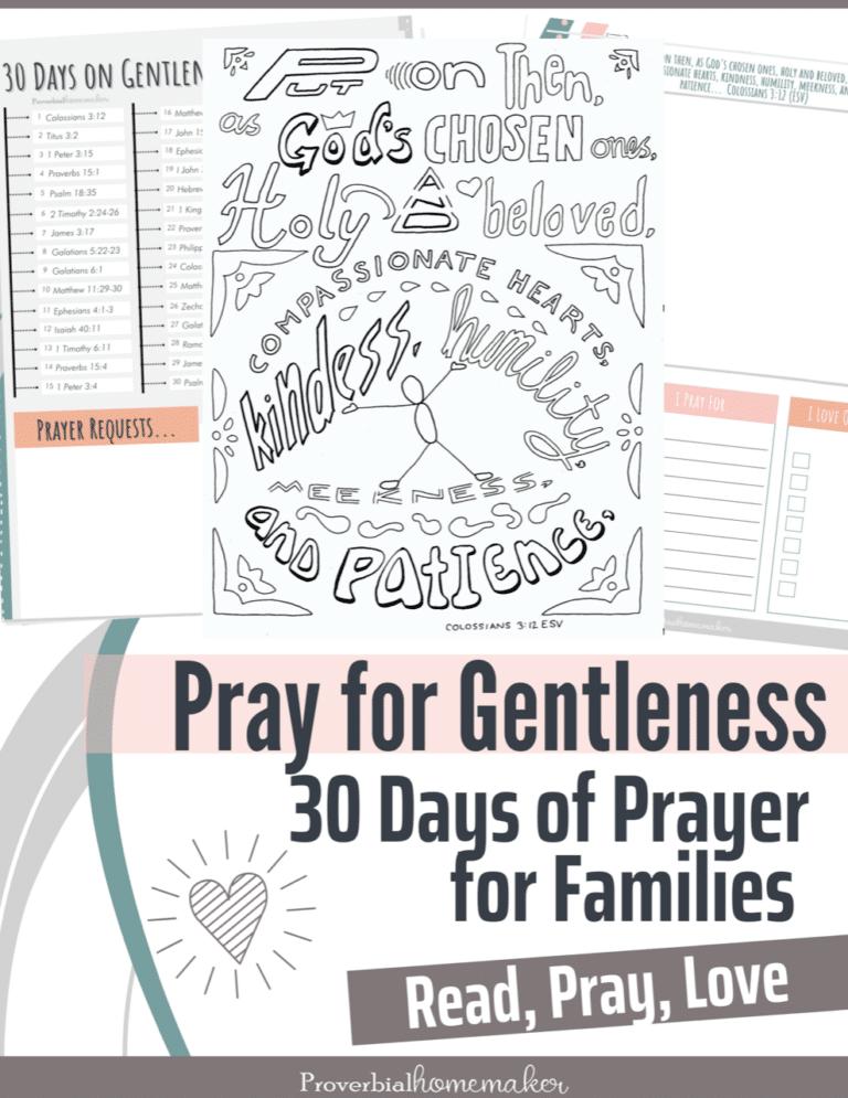Gentleness Family Bible Study. #freehomeschooldeals #fhdhomeschoolers #learningaboutgentleness #familycharacterstudy #familybiblestudy